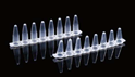 Picture of 0.1 mL PCR 8-strip Tubes, Clear, 125/pk 403102